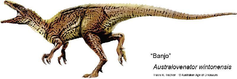 Australovenator wintonensis